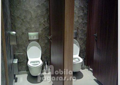 compartimentari-sanitare-11