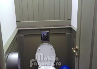 compartimentari-sanitare-15