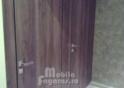 compartimentari-sanitare-8